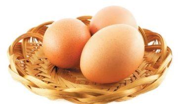 Могут ли быть глисты в яйцах