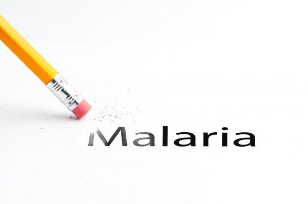 Лечение малярии