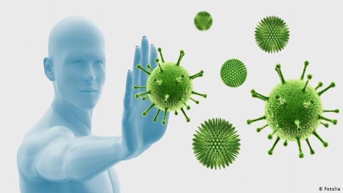 Вирусы - паразиты бактерий, могут ли вирусы воздействовать на бактерии